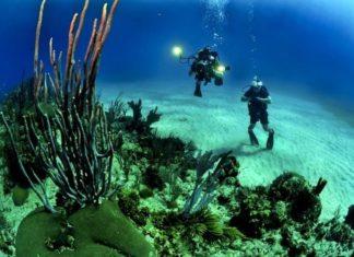 Corse, plongée en Corse, spot de plongée en Corse